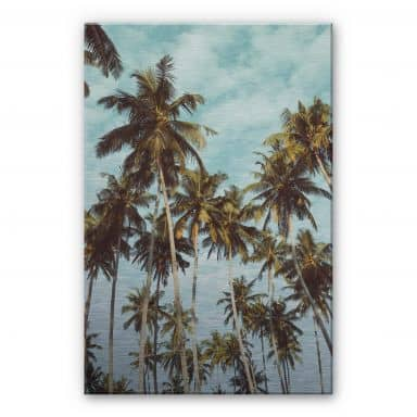 Alu-Dibond Silver effect - Palm Trees 08