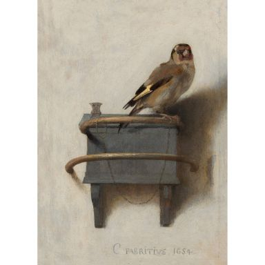 Leinwandbild Het puttertje ( Carel Fabritius)