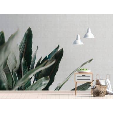 Livingwalls papier peint photo Walls by Patel 2 urban jungle 1