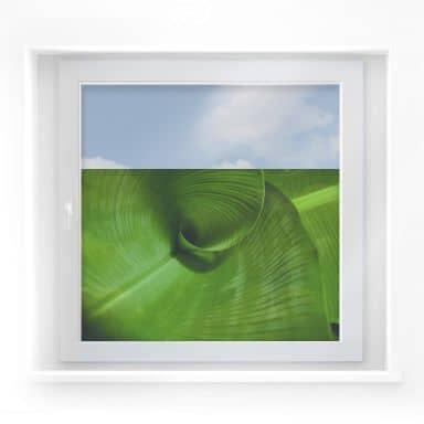 Fensterbild Bananenblatt