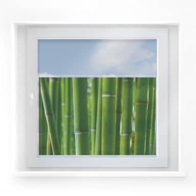 Fensterbild Bambuswald
