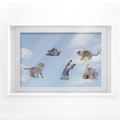 Fensterbild Real baby cats Set 02