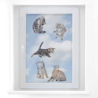 Fensterbild Real baby cats Set 03