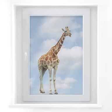 Fensterbild Real Giraffe