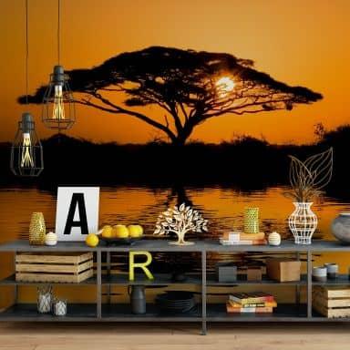 Africa - Photo Wallpaper