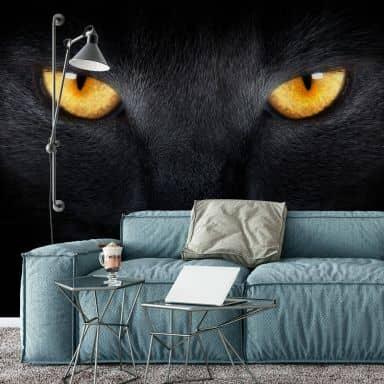 Cats Eyes - Photo Wallpaper