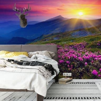 Fototapet - Solnedgang i bjergene