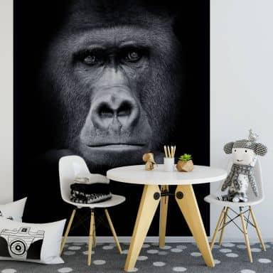 Gorilla - Photo Wallpaper