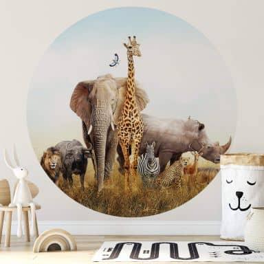 Fototapete Afrikanische Tiere - Rund