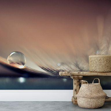 Fototapete Dmitry - Story of a Waterdrop - 384x260 cm