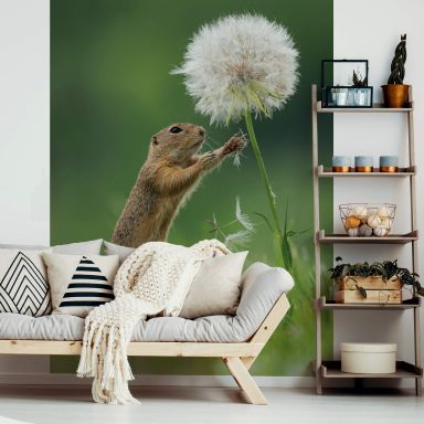 Photo Wallpaper Dick van Duijn - Squirrel with dandelion - 192x260 cm