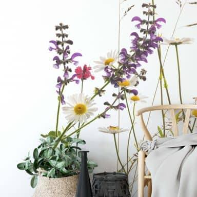 Photo Wallpaper Tan Kadam - Flora Marguerite