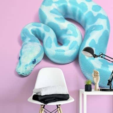 Fototapete Fuentes – Blue Snake - 192x260 cm