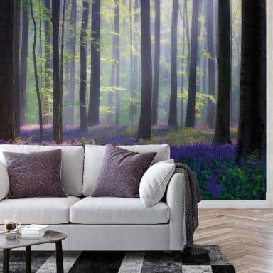 Fototapete Popan - Glockenblumen - 384x260 cm