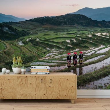 Fototapete Colombo - Reisterrassen in Vietnam - 192x260 cm