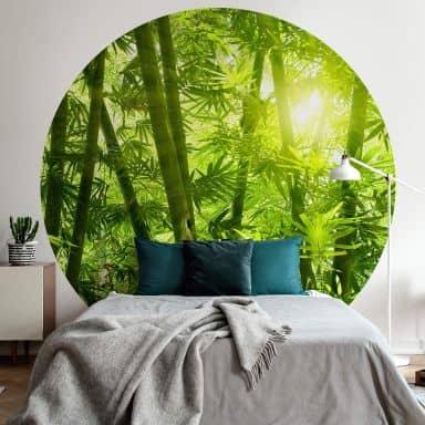 Fototapete Sonnenschein im Bambuswald - Rund
