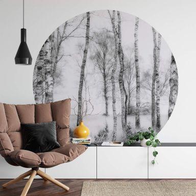 Behangcirkel Talen - Berkenbos (zwart-wit)