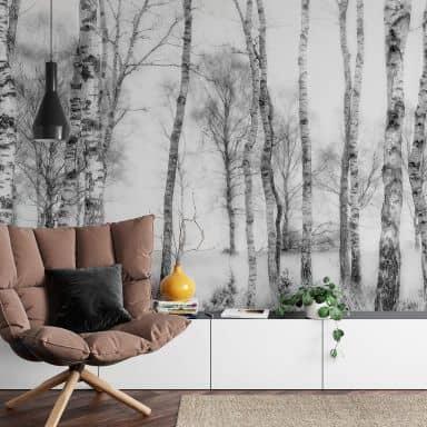 Fotobehang Talen - Berkenbos (432x260 cm)