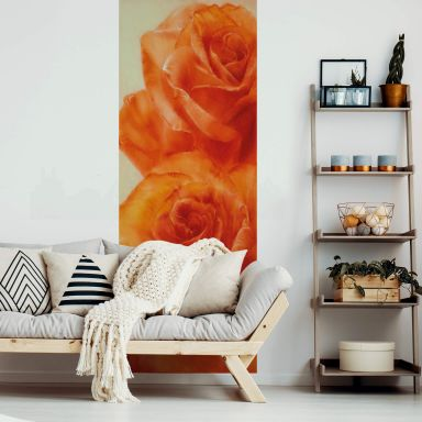 Photo Wallpaper Schmucker - Roses