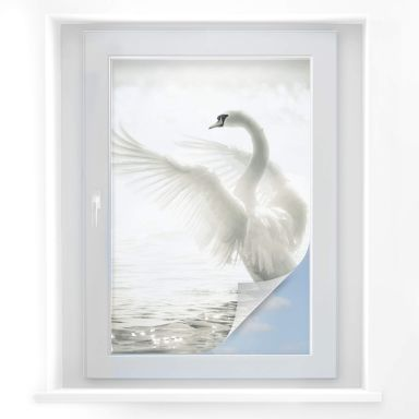 Window foil Majestic Swan