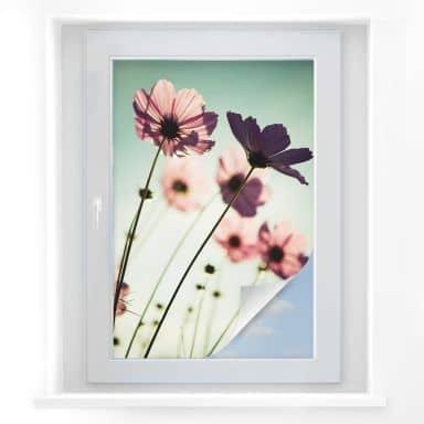 Window foil Pink Flowers