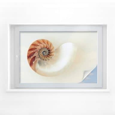 Sichtschutzfolie Nautilus