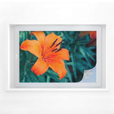Sichtschutzfolie Tropical Lily