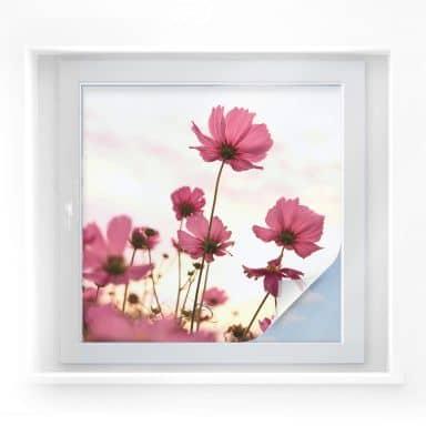 Window foil Pink Flower