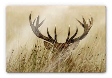 Watchful deer Glass art