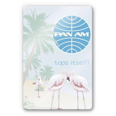 Glasbild PAN AM - Flamingobucht