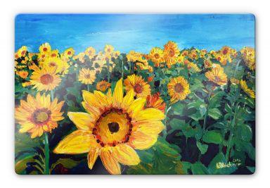 Glasbild Bleichner - Sunflower Fields