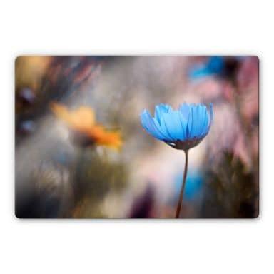 Glasbild Bravin - Tanzende Blumen