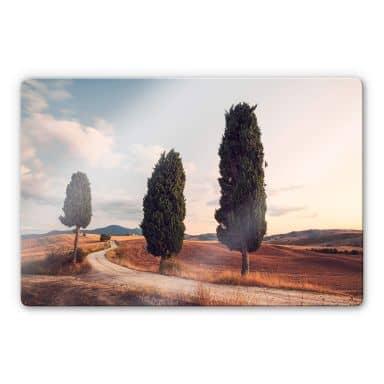 Glasbild Colombo - Drei Zypressen am Weg