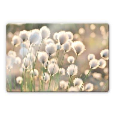Glasschilderij Delgado - Flower Magic