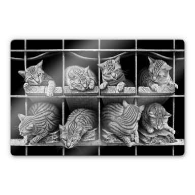 Glasbild Heine - Die Katze