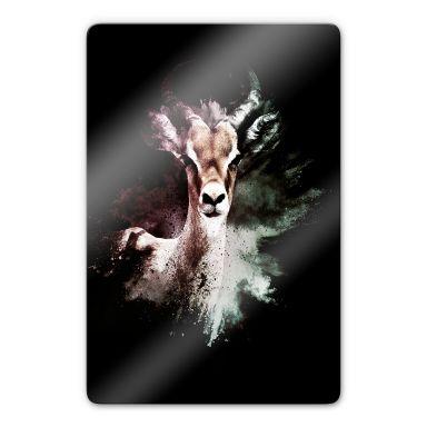 Glasbild Hugonnard - Wild Explosion: Antilope