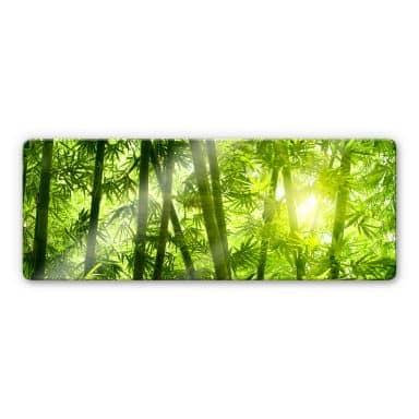 Sunshine in the Bamboo Forest - Panorama Glass Art