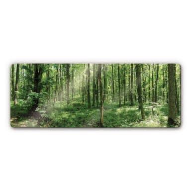 Tableau en verre - Panorama Forêt 01