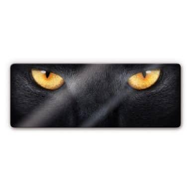 Cat\'s Eyes Panorama Glass art