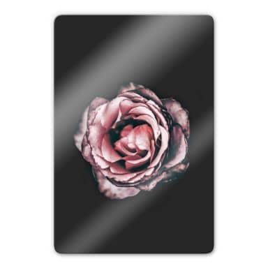Glasbild Pink Flower Dream 02