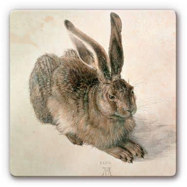 Dürer - Young Hare Glass art