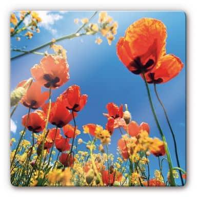 Poppies in Canola Field Glass art