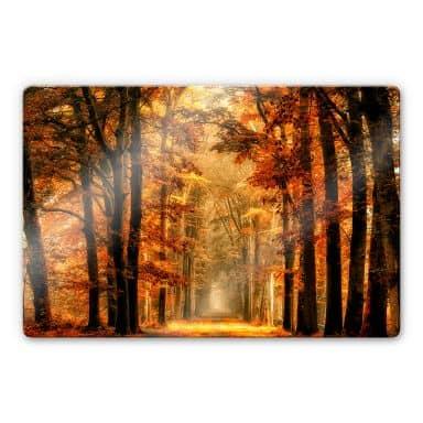 Glasbild van de Goor - Herbstallee