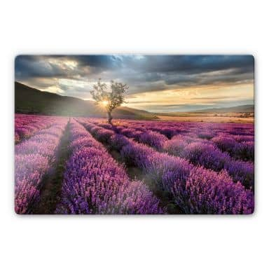 Lavender in the Provence Glass art