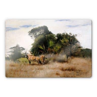 Glasbild Kuhnert - Antilopen