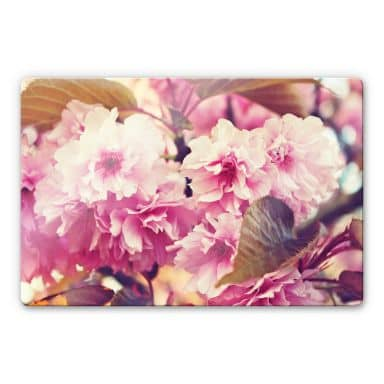 Glasbild Vintage Kirschblüten