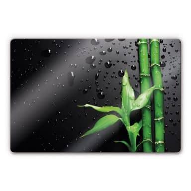 Glasbild Bamboo over Black