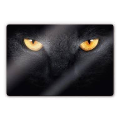 Cat\'s Eyes Glass art