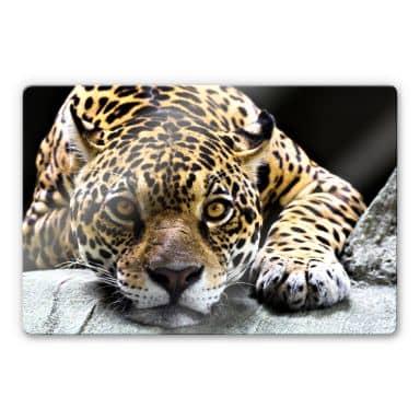 Jaguar Glass art