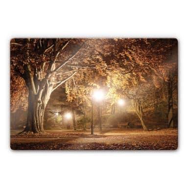 Glasbild Herbst im Park